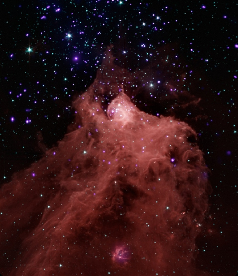 Cepheus B, a molecular cloud and stellar nursery