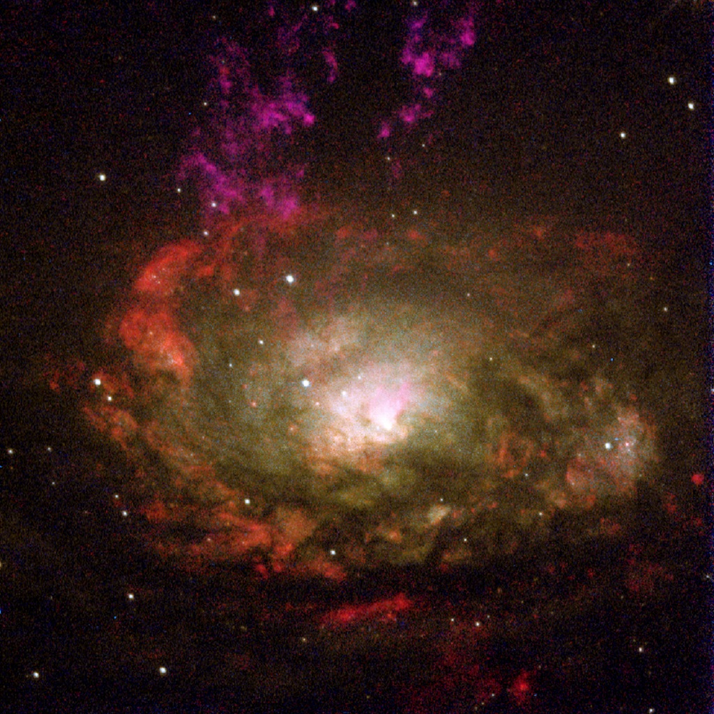 Circinus Galaxy, an active spiral galaxy in Circinus