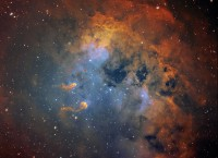 IC 410, a nebula with tadpoles