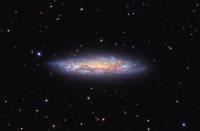 NGC 3556