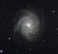 NGC 1288, a huge spiral galaxy in Fornax