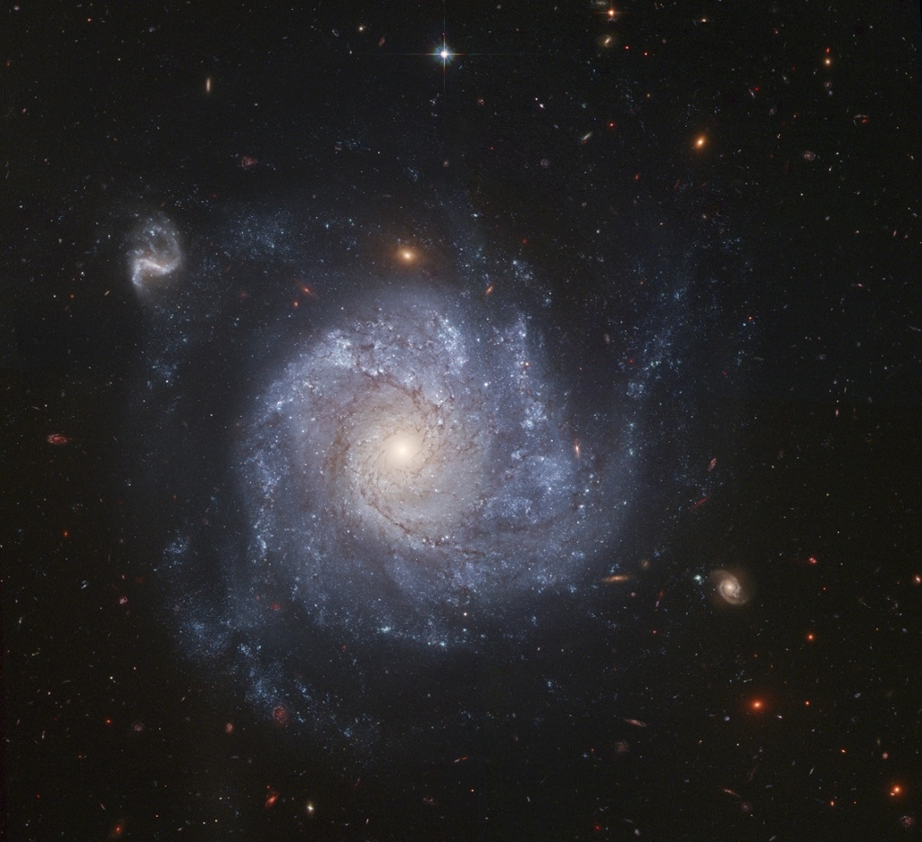 NGC 1309, a spiral galaxy in Eridanus