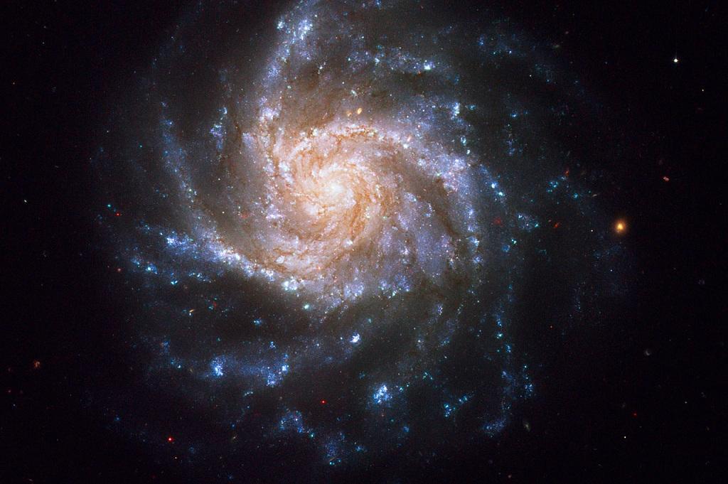 NGC 1376