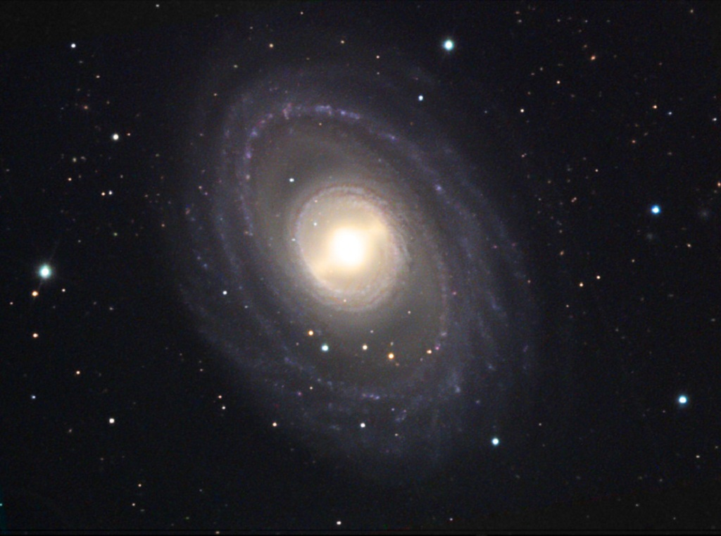 NGC 1398, a large, barred spiral galaxy in Fornax