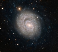 NGC 1637, a barred spiral galaxy in Eridanus