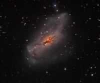 NGC 2146, a starburst galaxy in Camelopardalis