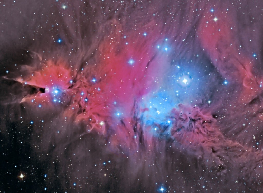 NGC 2264 including the Cone Nebula (left), the Christmas Tree Cluster, a young open star cluster with the star S Monocerotis (or 15 Mon), and the Fox Fur Nebula (right below). It lies 2500 ly away in Monoceros