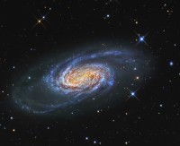 NGC 2903, a bright spiral galaxy in Leo