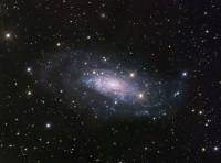 NGC 3621, an unusual spiral galaxy in Hydra
