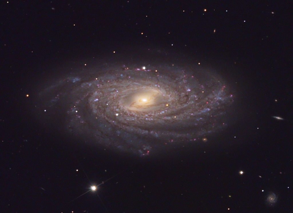 NGC 3953, a spiral galaxy in Ursa Major