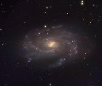 NGC 4145, a barred spiral galaxy in Canes Venatici