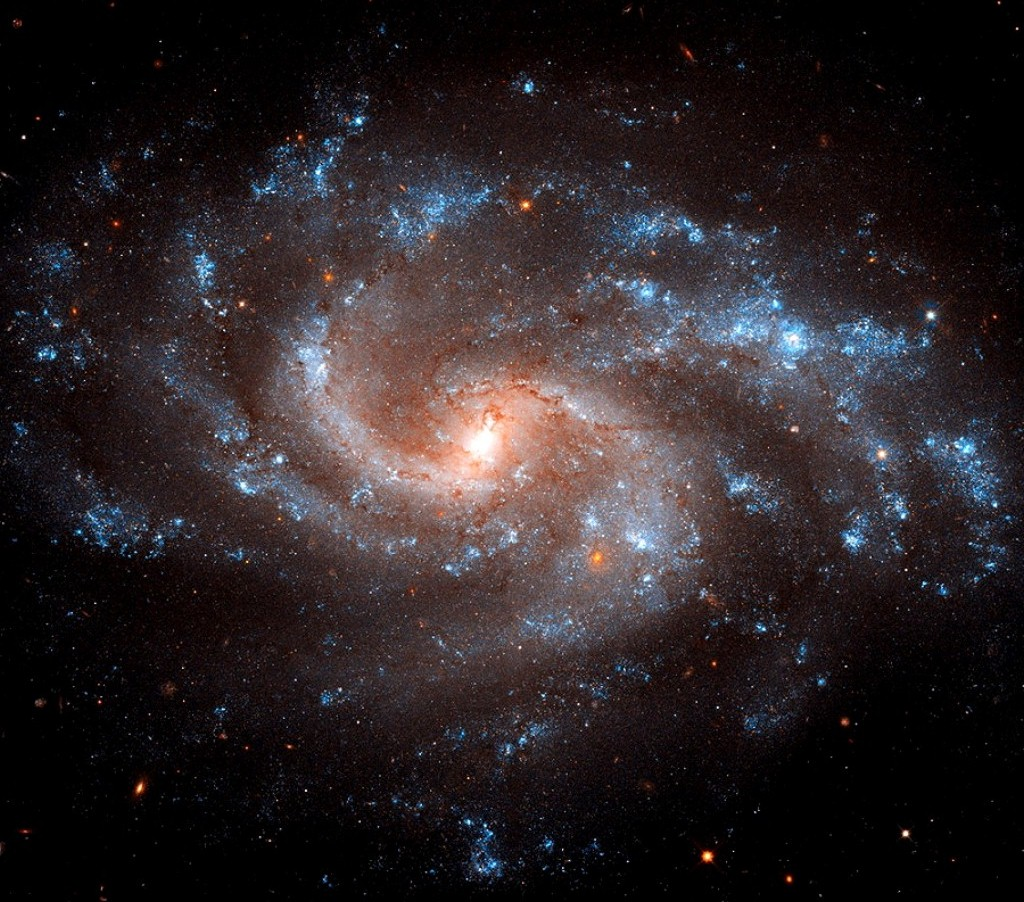 NGC 5584