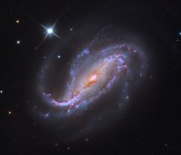 NGC 613, a large elongated spiral galaxy