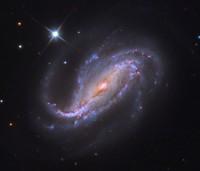 NGC 613, a large elongated spiral galaxy