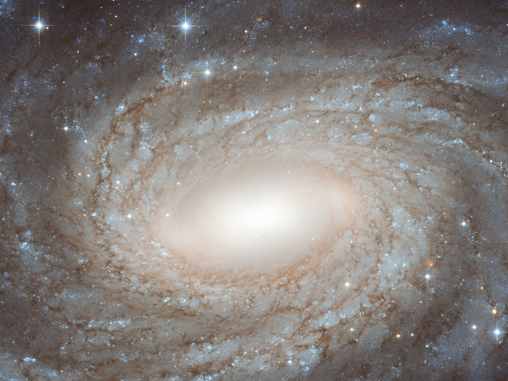 NGC 6384, a barred spiral galaxy in close-up