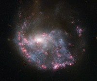 NGC 922, a ring-shaped spiral galaxy in Fornax