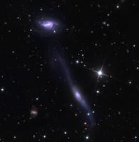 MCG-01-39-003, NGC 5917, Arp 254