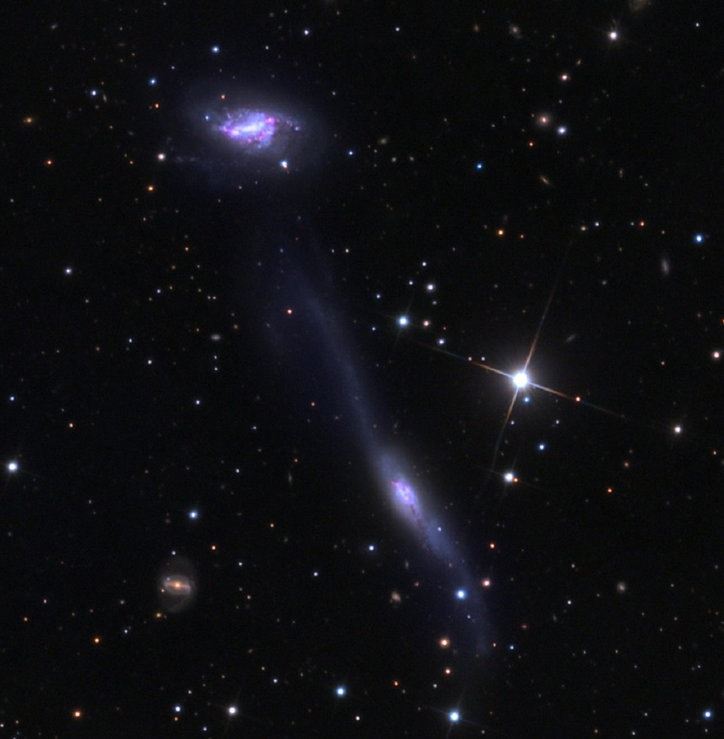 The Hooked Galaxy and Companion in Libra | Anne's Astronomy News