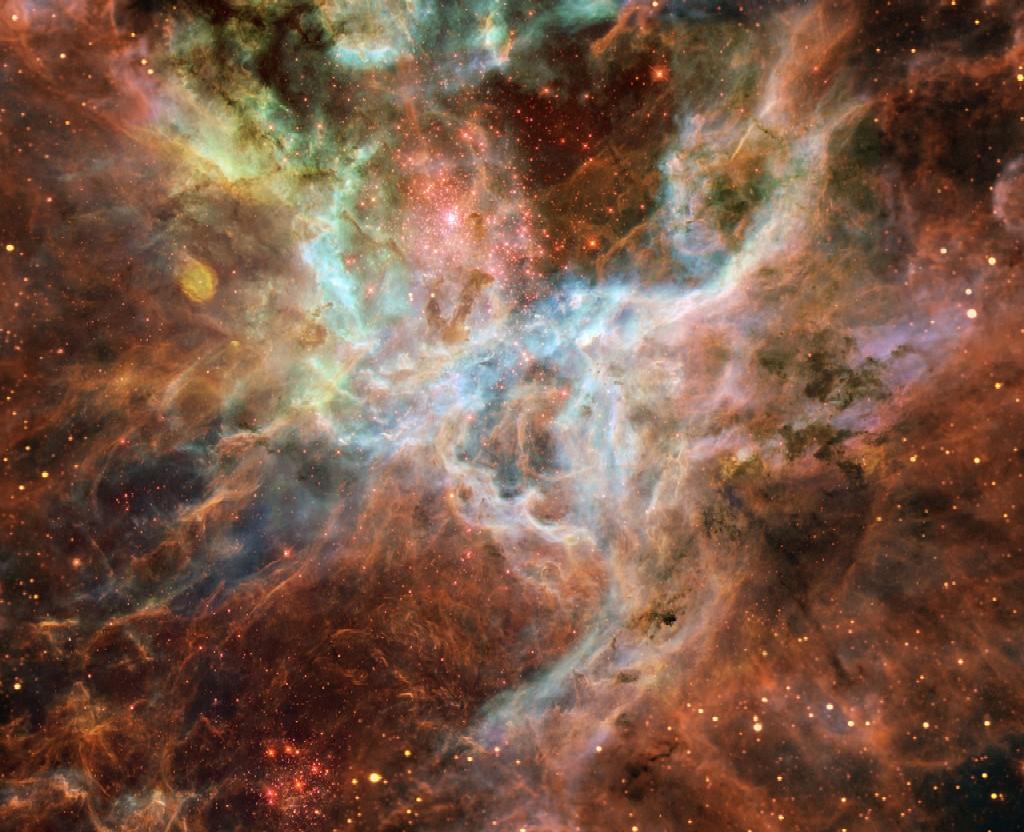 The Tarantula Nebula, the central region