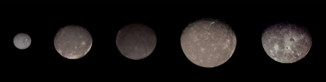 Uranus' major moons, from left to right Miranda, Ariel, Umbriel, Titania and Oberon