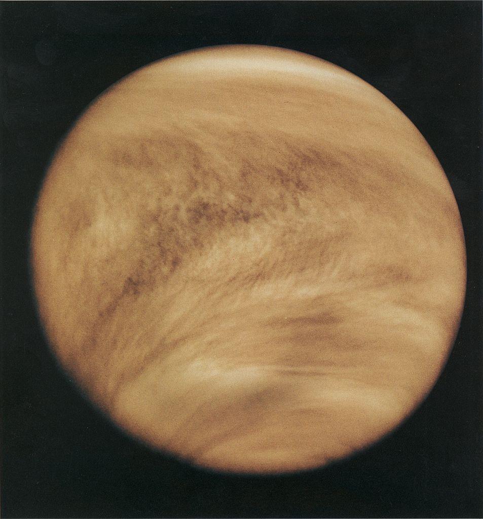 Venus' cloud structure in the atmosphere in 1979, revealed by ultraviolet observations by Pioneer Venus Orbiter