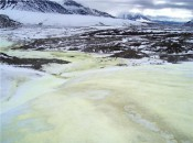 Arctic Bacteria Help in the Search for Life on moon Europa