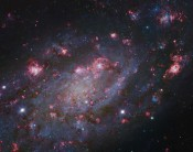 Anne's Picture of the Day: Spiral Galaxy NGC 2403