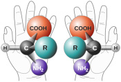 The Hunt for Extraterrestrial Amino Acids