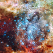 Star Clusters in the Tarantula Nebula on a Collision Course