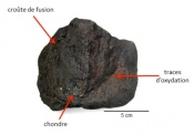 "Meteorite ""Paris"" Contains Similar Organics as the Interstellar Medium"