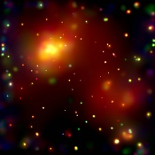 Anne's Picture of the Day: Galaxy Cluster Abell 2125
