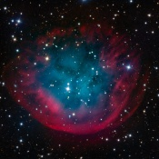 Anne's Picture of the Day: Planetary Nebula Abell 31