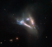 Anne's Image of the Day: Interacting Galaxies IC 2184