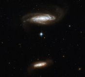 Anne's Image of the Day: Interacting Galaxies IC 2810
