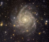 Anne's Image o the Day: Spiral Galaxy IC 342