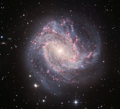 Anne's Picture of the Day: Spiral Galaxy Messier 83
