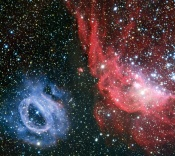 Anne's Image of the Day: NGC 2014 & NGC 2020, two bright nebulae