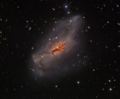 Anne's Picture of the Day: Starburst Galaxy NGC 2146