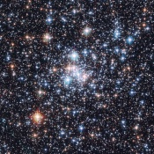 Anne's Picture of the Day: Open Star Cluster NGC 290
