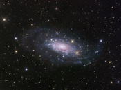Anne's Picture of the Day: Spiral Galaxy NGC 3621