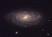 Anne's Image of the Day: Spiral Galaxy NGC 3953