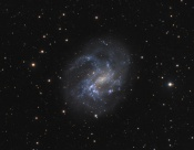 Anne's Image of the Day: Spiral Galaxy NGC 4395
