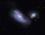 Anne's Image of the Day: Interacting Galaxies NGC 4490 & 4485