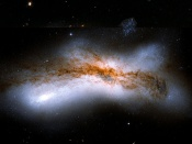 Anne's Picture of the Day: Colliding Galaxies NGC 520