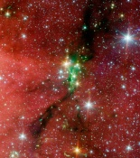 Anne's Image of the Day: Serpens South Star Cluster