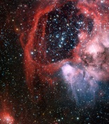 Anne's Picture of the Day: The Bean Nebula