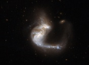 Anne's Picture of the Day: Interacting Galaxies The Grasshopper