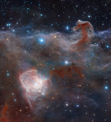 Anne's Image of the Day: The Horsehead Nebula & NGC 2023