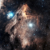 Anne's Image of the Day: The Pelican Nebula