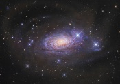 Anne's Image of the Day: The Sunflower Galaxy